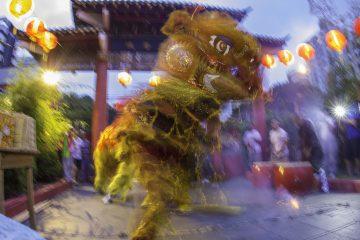 Virada de Ano Novo Chinês