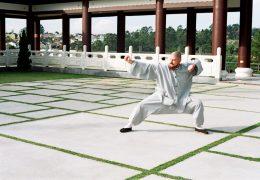 O Que é Kung Fu?