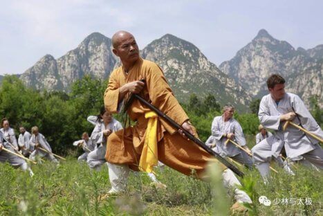 Curso de Cajado Bodhidharma